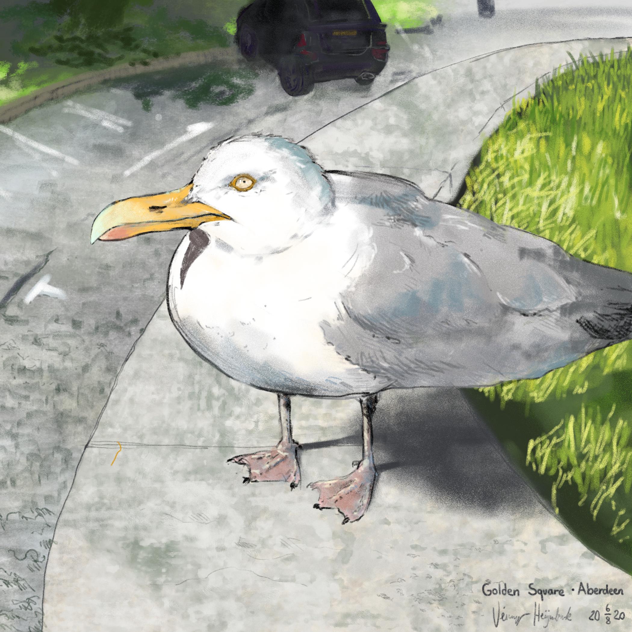 The Gull, Golden Square, Aberdeen, Scotland