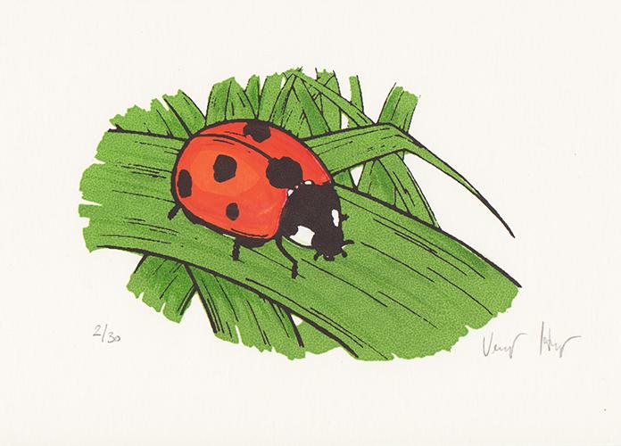 ladybug Silkscreen print